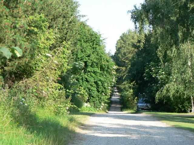 Møllebakkevej