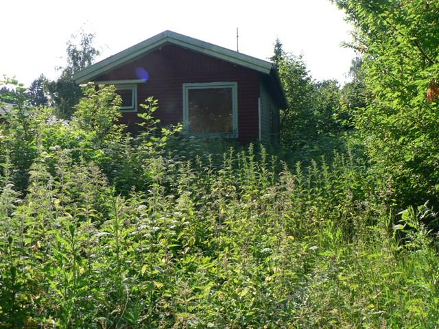 Et sommerhus omgivet af natur